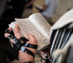 photo man's hand with tefillin and siddur